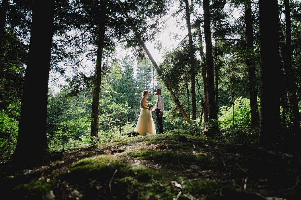 18B--0037-svatba_v_lese