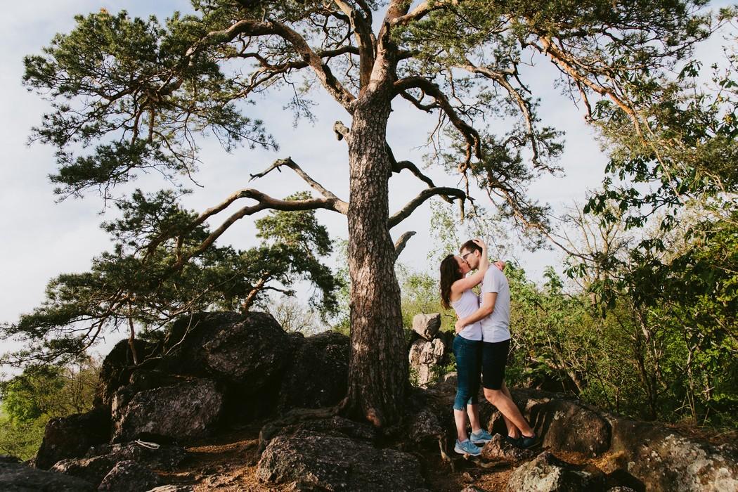 Snoubenci se libaji pod stromem v Babim lomu.